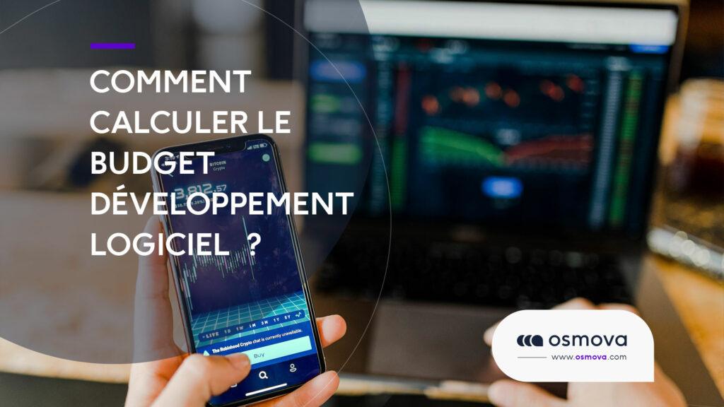 budget développement logiciel